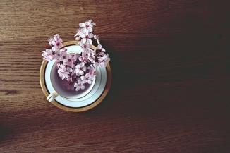 spring-2174751__340