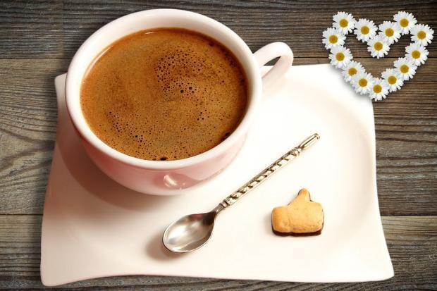 cafe-3645215_960_720
